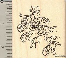 Sea Dragon fantasy rubber stamp J11504 WM