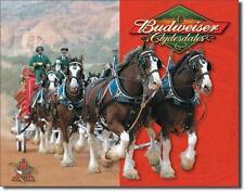 Pferde Kutschen Gespann USA Budweiser Bier Metall Schild Deko Plakat