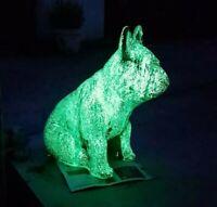 YG500L 100g GRÜN dunkeln f. Epoxid Harz neon UV bastel Effekt Lack leucht UV