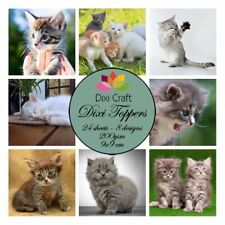 New Dixi Craft Topper Pack Cat
