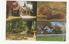 Formby Multiview Postcard 425a