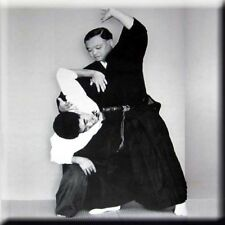 Aikido 17 - Daito Ryu 03 Arm Hand Lock Chock holds Aikido Arts m