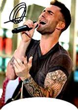20 water slide nail art  decals Maroon 5 Adam Levine french tip trending