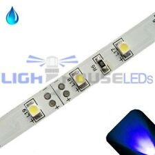 Blue - PLCC2/3528 12V LED Strip - Adhesive Backing - Water Resistant - 5m Roll /