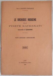 FAUSTO FAGGIOLI LE ORCHIDEE INDIGENE DELE PINETE RAVENNATI GINANNI RAVENNA 1907