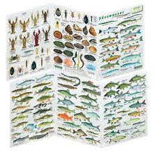 Fischfaltblatt Süsswasser Fischbestimmungskarte Faltblatt zur Fischbestimmung