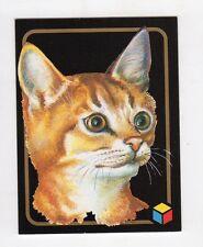 figurina card - AMICI DEL CUORE  - numero 221 ABISSINO