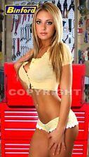 Fridge Magnet Sexy Binford tools tool time girl pretty beautiful blonde babe