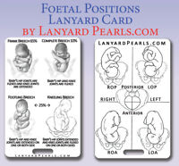 Fetal Positions Lanyard Card | Midwife Nursing Student Obstetrics