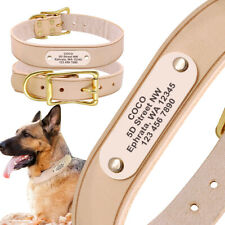 Strong Real Leather Dog Collar Customized ID Nameplate for Medium Large Dogs XL
