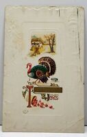 Thanksgiving Greetings Turkey 1911 Richland Center Wis Embossed Postcard F12