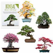 Bonsai Samen mit hoher Keimrate -  5er Set inkl. GRATIS eBook