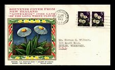 DR JIM STAMPS WHITE CLOUD MOUNTAIN DAISY FLOWERS FDC NEW ZEALAND COVER