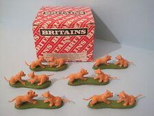 Britains plastica animali da zoo: LION CUCCIOLI GIOCO confezione commerciale di 24