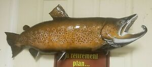 """30 1/4"""" Male Brown Trout Taxidermy Mount Fish Real Skin Mount"""
