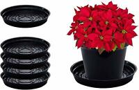 CWP Plant Tray Round Drip Pan Saucers (5 Pack) - Black Clear & Terracotta