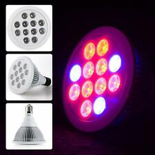 Firlar LED Grow Light Bulb for Garden Greenhouse Indoor & Hydroponic Aquatic,12W