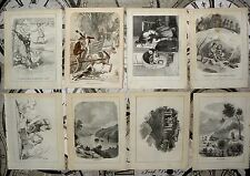 20 Antique Book Plates, (Removed from Book) Collectible & Vintage. Paper. c1860