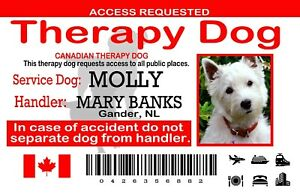 Canadian Service Dog ID Card, Therapy Dog Wallet Card, Plastic PVC, Therapy Dog