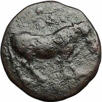 GELA in SICILY 420BC Bull River God Gelas Authentic Ancient Greek Coin i55900