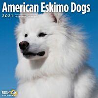 Calendario Expo Canine 2021 2021 Calendar Japan Dog (Japanese) | eBay