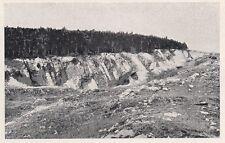 D2686 La pineta Burgstaller-Bidischini a Opcina - Stampa - 1922 vintage print