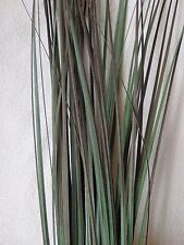 """Artificial Aquarium PLANT w/ WEIGHTED stone BASE 19"""" Med Green-Purple PVC GRASS"""