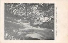 D9/ Cortland Ohio Postcard c1910 Walnut Creek Scene