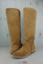 UGG DALEY CHESTNUT SUEDE TALL RIDING  BOOTS WOMENS US 8  NIB