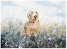 BASSET FAUVE de BRETAGNE DOG ART LIMITED EDITION PRINT