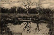 CPA Forét de Fontainebleau - La Mare á Dagneau (166597)
