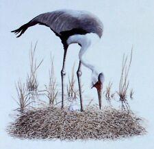 TRAMPOLIERE MALAWI WWF Uccelli UCCELLO BUSTA Primo Giorno 1° FDC 496