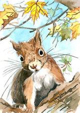 "ACEO 2.5""x3.5""- Autumn squirrel, Animal art print by Anna Lee, Cute animal"