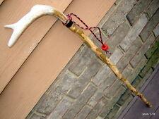 rare mottled BEECHWOOD Deer antler CANE/walking-stick~natural handmade - gift