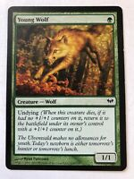 Young Wolf - Creature - Wolf - MTG Card