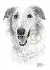 Dog BORZOI pencil drawing artwork A4 size by UK artist Pet Portrait