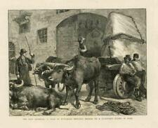 1873 antica stampa-ITALIA ROMA Scultore Studio marmo Carrello Buffalo (70B)