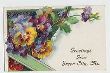 Missouri MO Postcard 1910 GREEN CITY Flowers Greetings from...