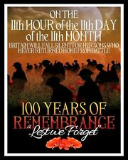 100 YEARS OF REMEMBRANCE LEST WE FORGET POPPY DAY POPPIES METAL PLAQUE SIGN R57