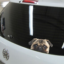 PEEKING PUG Dog Peeper Funny Novelty Car,Van,Bumper,Window Vinyl Decal Sticker