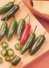 """Serrano Pepper *Heirloom* (50 Seed's) """"FREE SHIPPING""""<Non-GMO>"""
