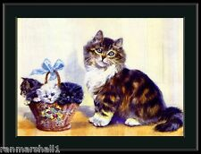 English Picture Print Tabby Persian Cat  Kittens Art