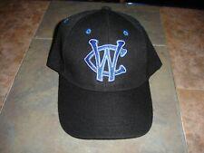 NEW Windy City Thunderbolts Frontier League baseball hat adjustable back OSFM