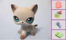 Littlest Pet Shop Cat  Egyptian World Rare 391 Free Accessory Authenti US Seller