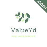 VALUEYD.com Catchy Short Website Name Brandable Premium Domain Name for Sale