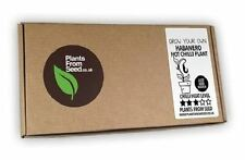 Plants From Seed - Grow Your Own Habanero Hot Chilli Plant - Mini Kit