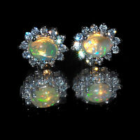 Natural Opal Earrings 13mm/11mm AAA Quality Pair in 925 Solid Sterling Silver