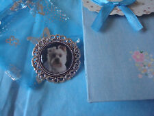 """""""WEST HIGHLAND TERRIER"""" .  Brooch. lncl. Gift bag. NEW LARGE SIZE"""
