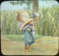 Magic Lantern Glass Slide Java Old Woman Carrying Burden Malaysia Javanese