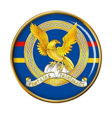 Irish Air Corps Pin Badge